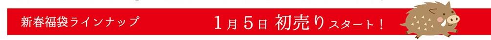 【東京店・京都店同時販売】福を呼ぶ★2019年新春福袋 数量限定品はお早めに!! @ 京都 きもの京小町 | 日本
